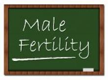 Blackboard with MALE INFERTILITY on it