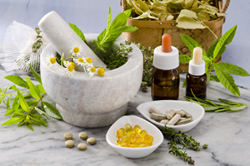 Herbs used in Alternative or Complementary Medicine